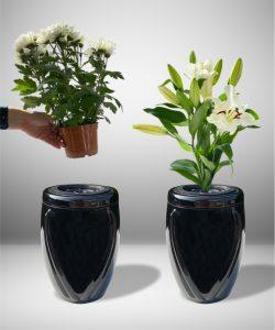 Vazos kapams gedulas 3